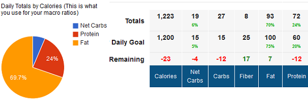 Tracking Daily Macros for Weight Loss
