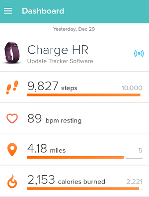 Fitbit Exercise Diary