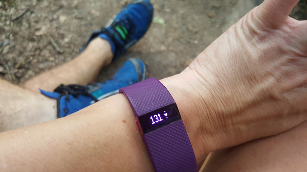 Fitbit Heart Rate : Cardio Zone