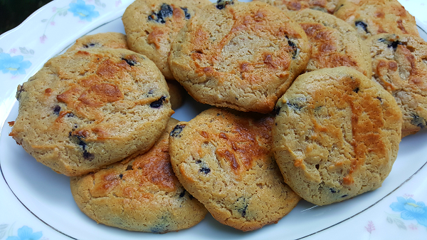 Easy Low Carb Cookies