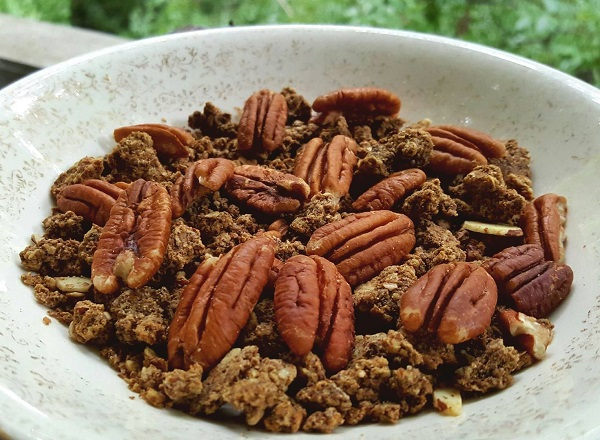 Healthy Snack: Low Carb Granola with Pecan Halves