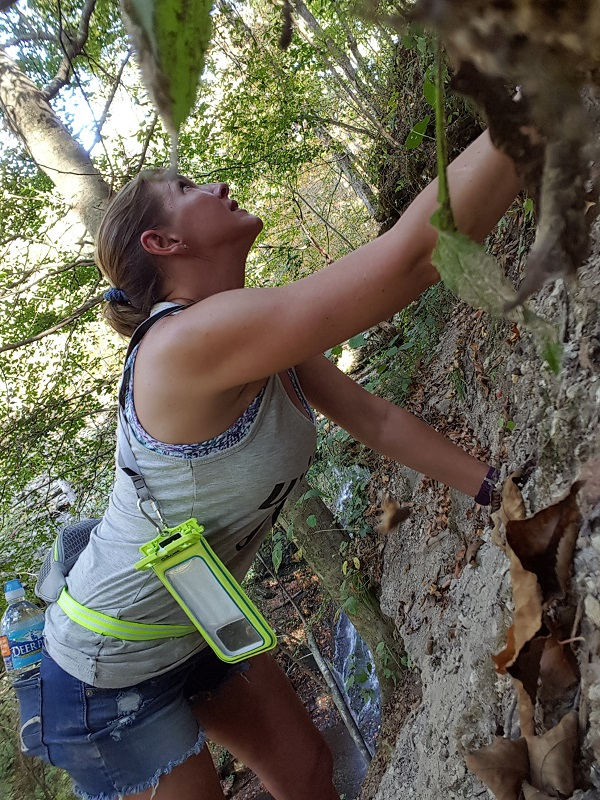 Rock Climbing - Fitness Challenges