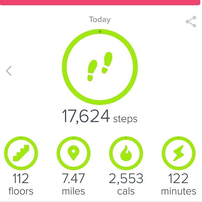 Fitbit Hiking Steps