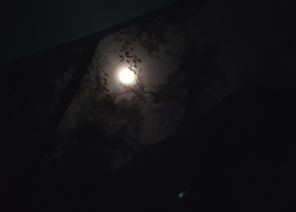 Full Moon Camping - View From The Tent