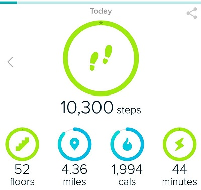 Fitbit Fitness Goals