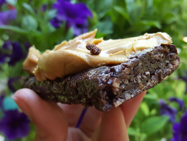 Keto Bars - Low Carb Version of a Mounds Bar!