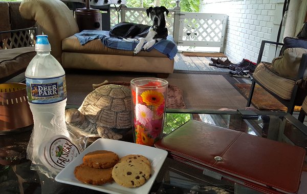 Low Carb Living with @LowCarbTraveler (at home on the back deck!)