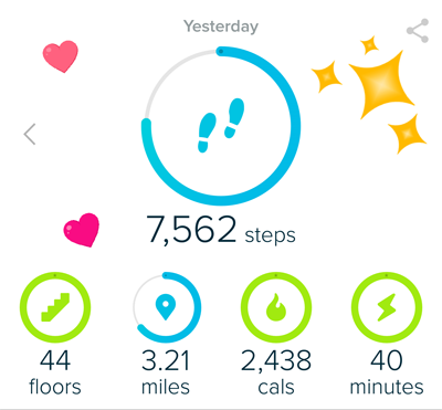 Hiking with Fitbit - Tracking Miles, Elevation and Inclines