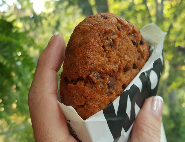 Gluten Free Low Carb Cookies - Chocolate Chip