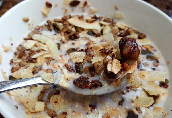 Low Carb Breakfast Cereal