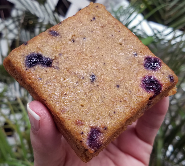 Low Carb Blueberry Breakfast Cakes