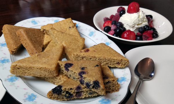 Paleo, Organic Low Carb Breakfast Cakes that are Gluten Free and Keto Friendly